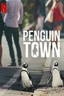 Місто пінгвінів